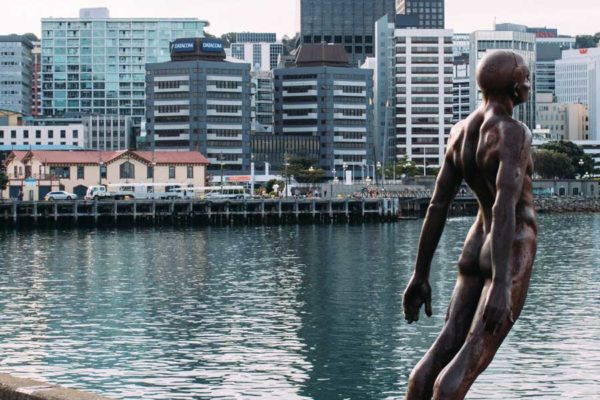 Wellington City Tour New Zealand