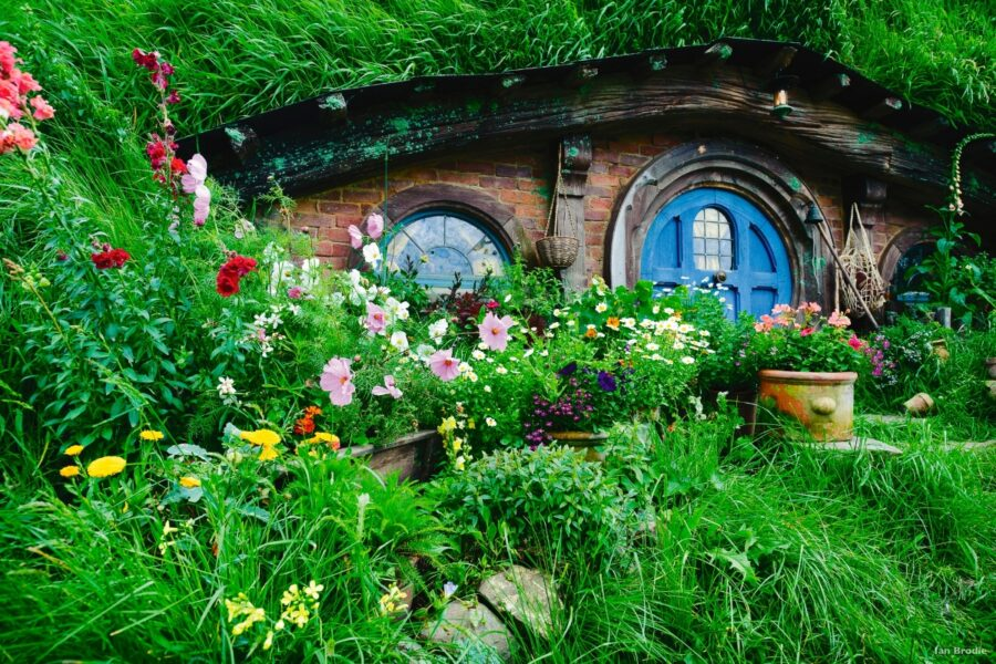 hobbit hole the shire new zealand lord of the rings tour hobbiton